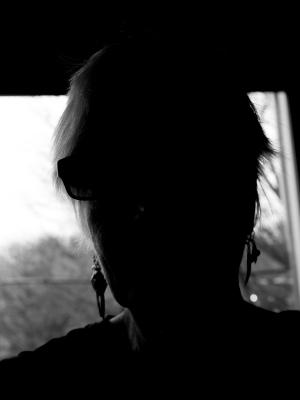 shadow or silo