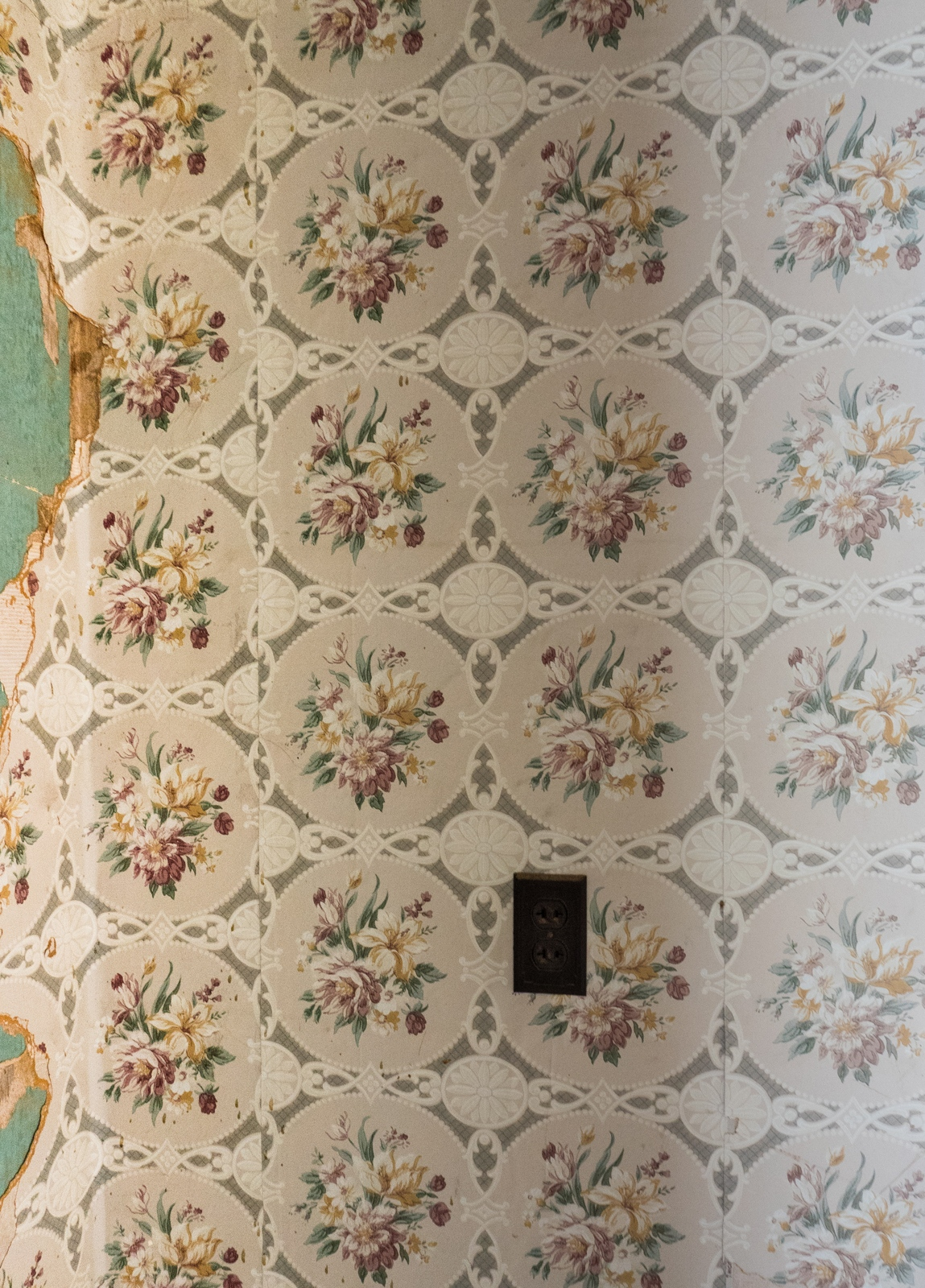 Torn wallpaper with electrical outlet.