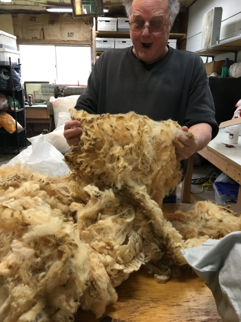 Raw fleece I had saved for 23 years.