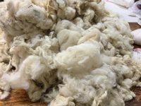 Making Yarn